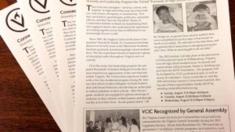"""Summer """"Voices of Inclusion"""" Newsletter"""